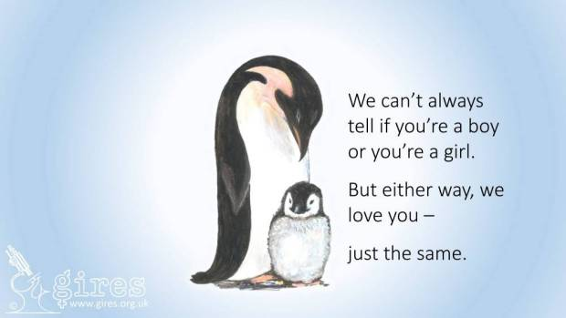 Children as young as three could soon be taught about transgender issues by reading story books about penguins.