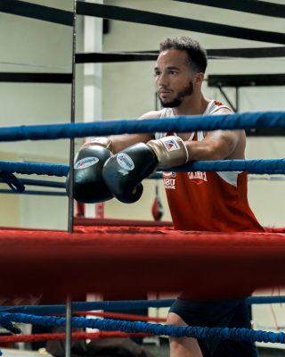 web article boxer
