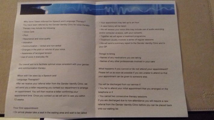 leaflet speech and language inside